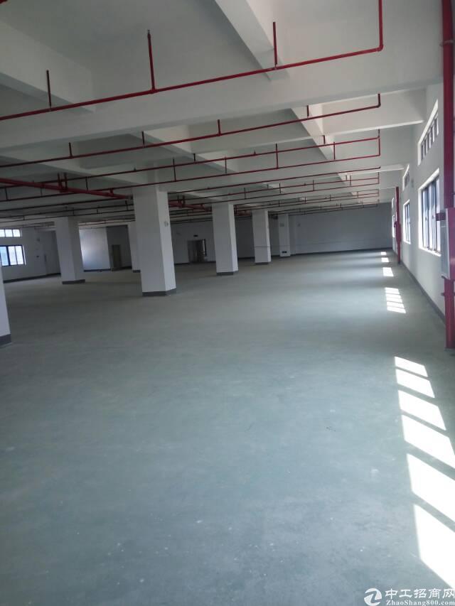黄江镇靠公常路旁原房东超级亮独院厂房招租-图2