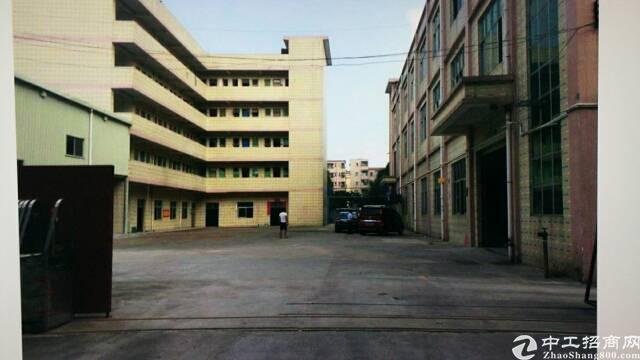 塘厦独院分租标准厂房