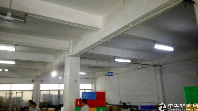 福永和平厂房招租