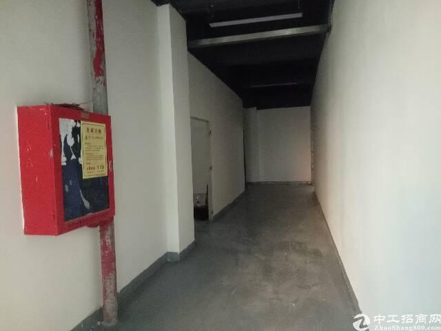 楼上新出原房东标准厂房700m²