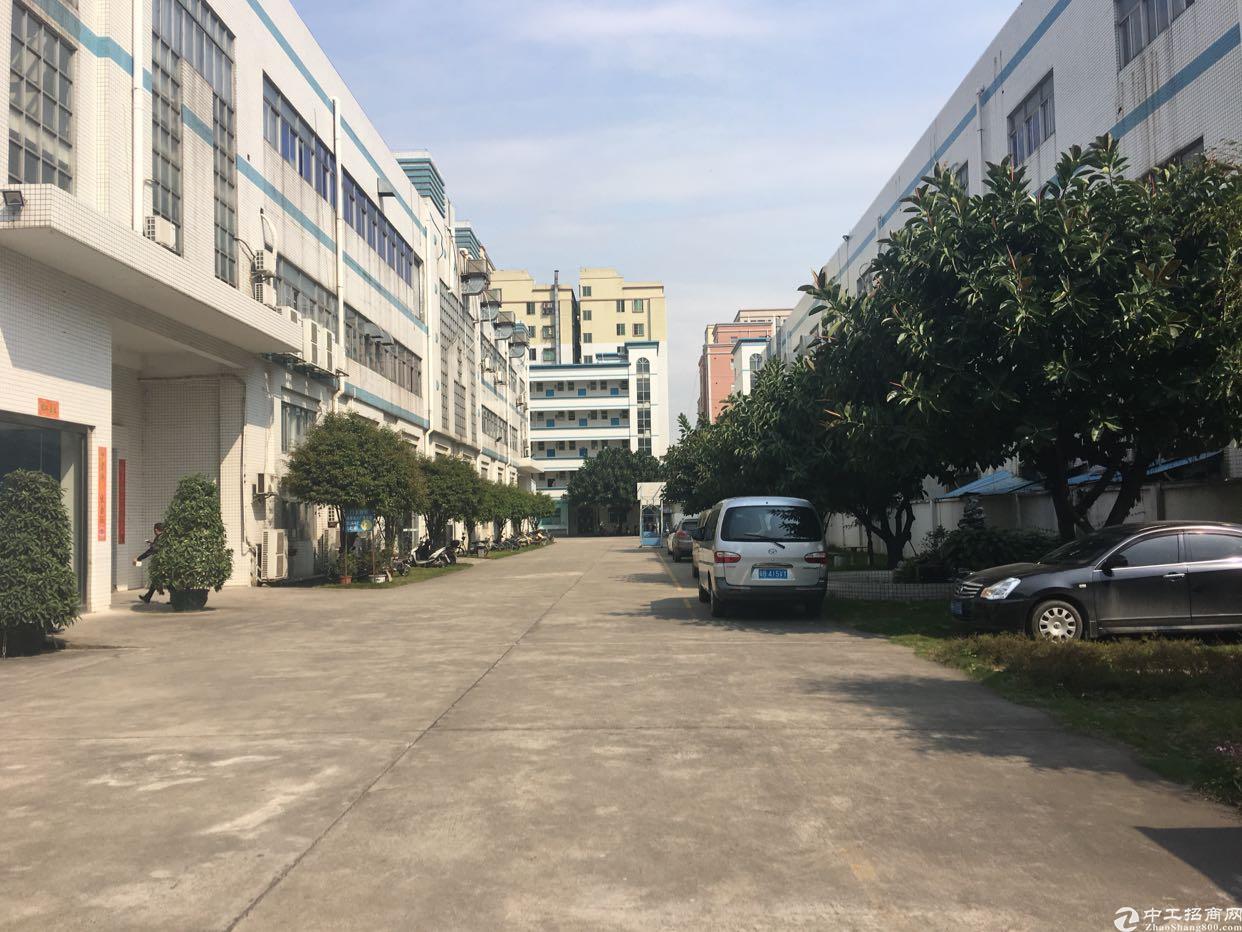 福永桥头新出原房东独院厂房4800平米