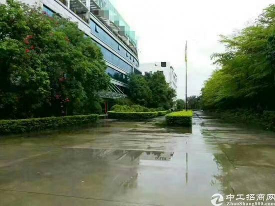 东莞新出花园式红本独院厂房12000平方出售