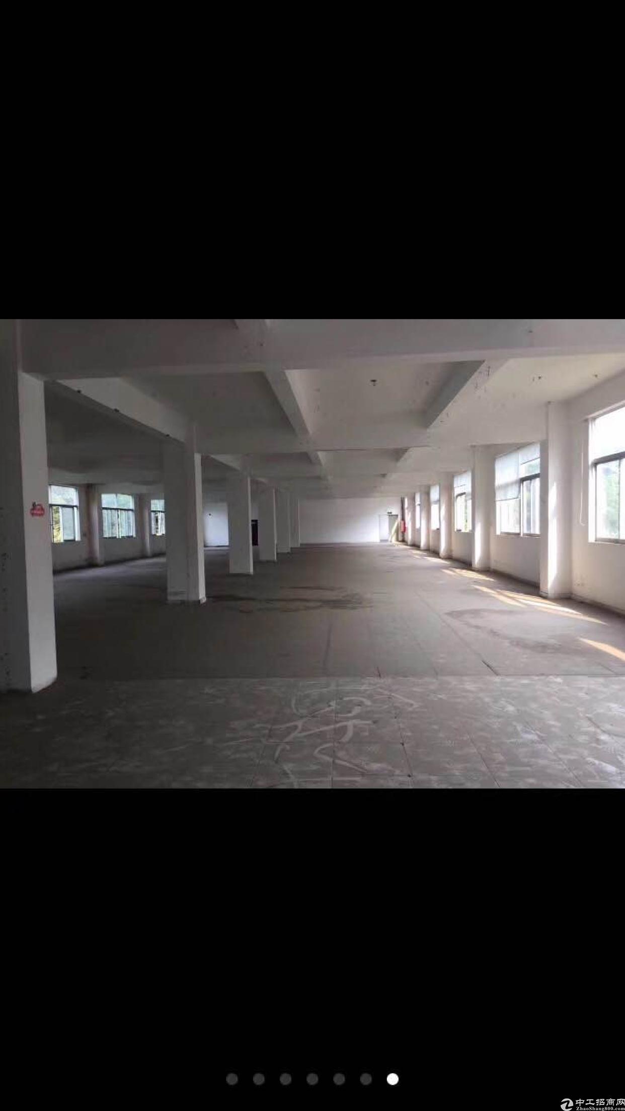 龙华新百丽独栋单层2500平共6层可半层出租-图3