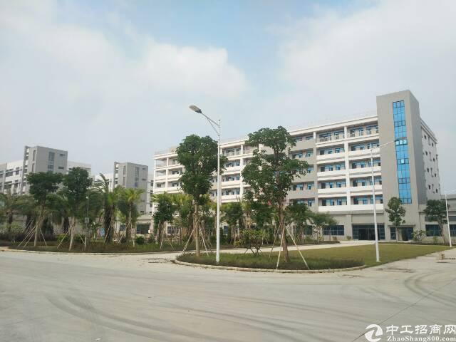 中山市130000平方标准全新厂房出租-图2
