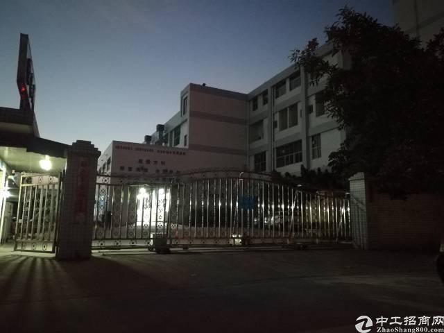 松岗原房东1-3层9500平方一楼六米4000平