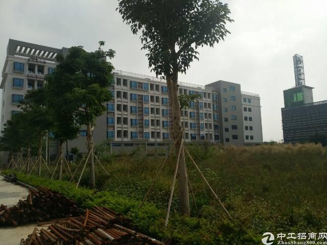 中山市130000平方标准全新厂房出租-图3