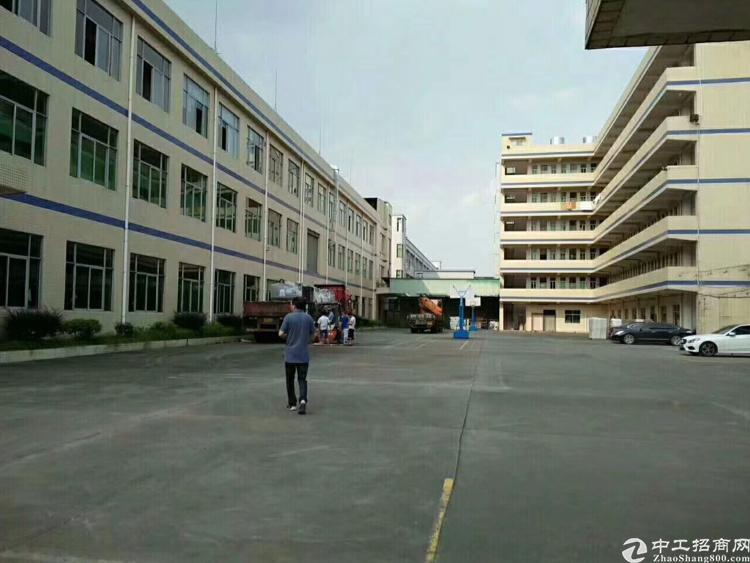 坪山医疗器械厂房3000平招租带装修,有红本。政府大力支持