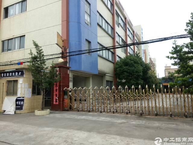 虎门沿江高速出口附近独院厂房三层3000平方,村委厂房