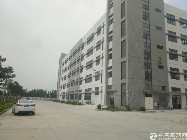 中山市130000平方标准全新厂房出租-图6