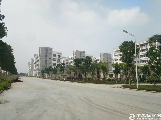 中山市130000平方标准全新厂房出租