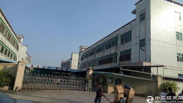 公明镇中心新出4200平方独栋厂房出租