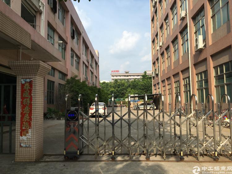 松岗高速出口原房东独门独院1-3层4250平米招租