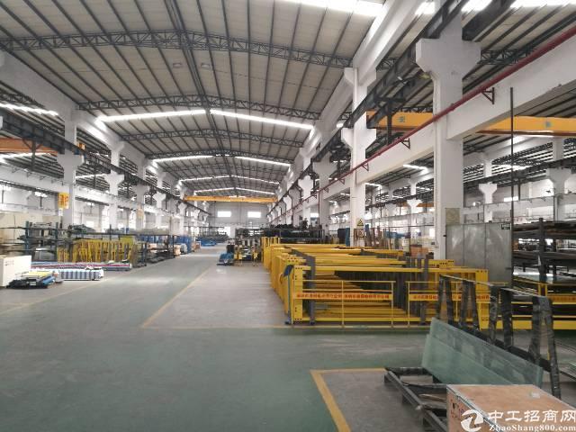 5800独院钢结构厂房出租