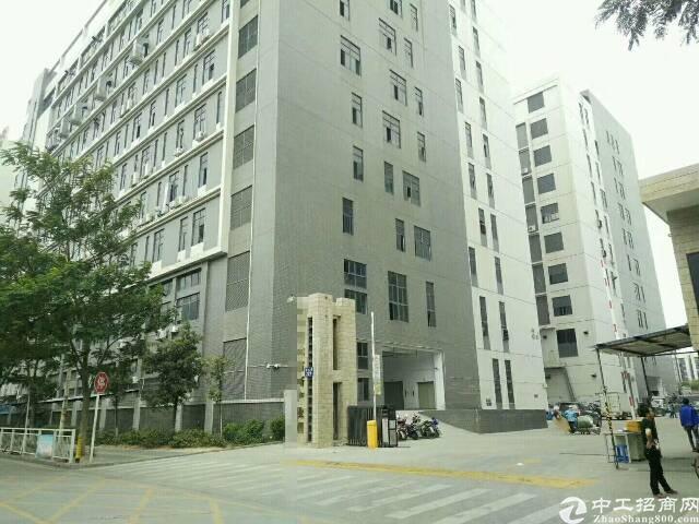 公明新出楼上标准厂房2600平米招租
