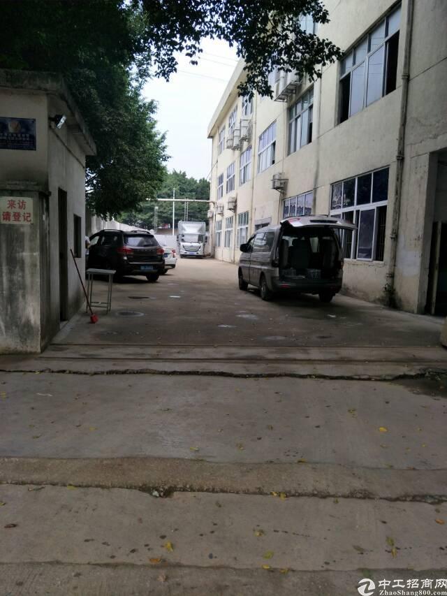 福永凤凰独门独院3900平方厂房出租