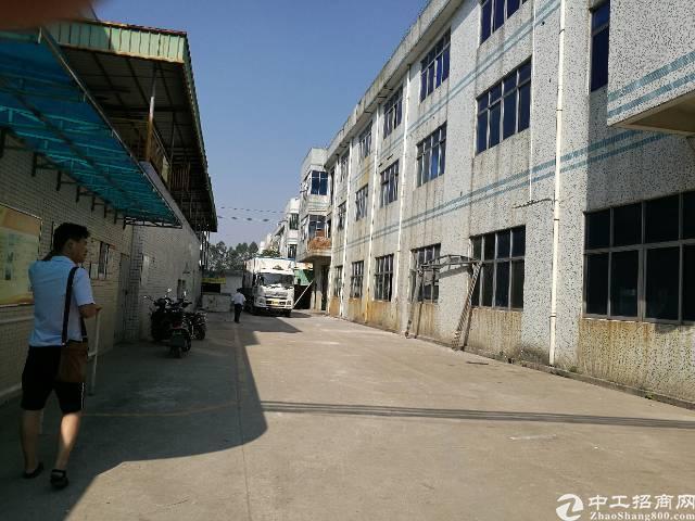 沙井洪田高速口附近新出一到三层5200平独门独院厂房