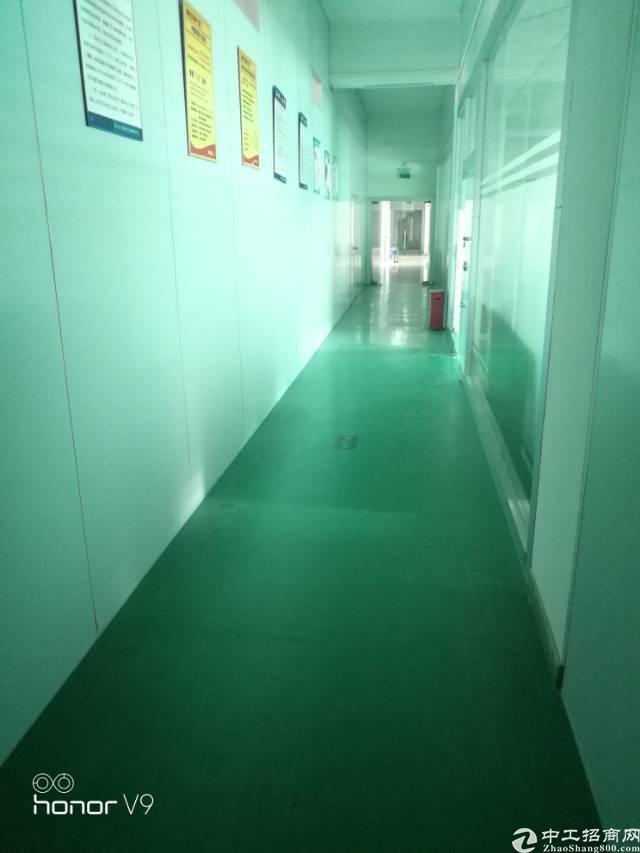 福永沿江高速出口新出1000平米楼上带装修厂房出租