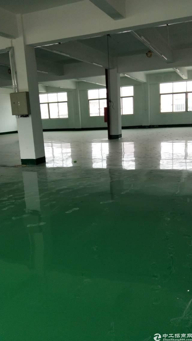 福永107国道新出楼上一整层厂房1800平