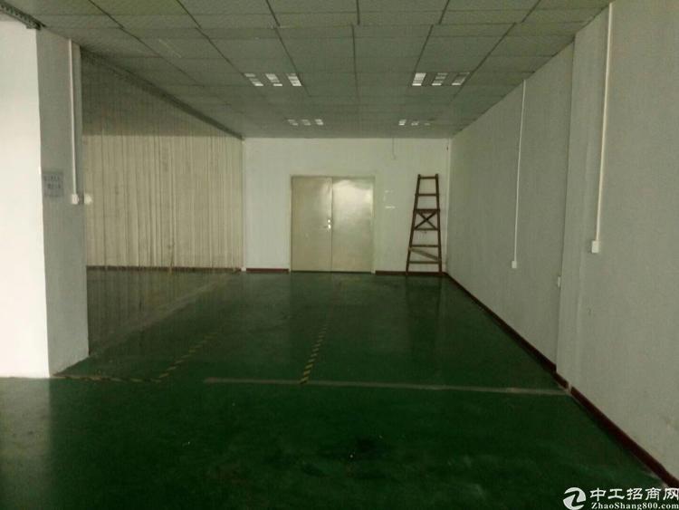 龙华清湖双地铁站间新出楼上1500平可分租