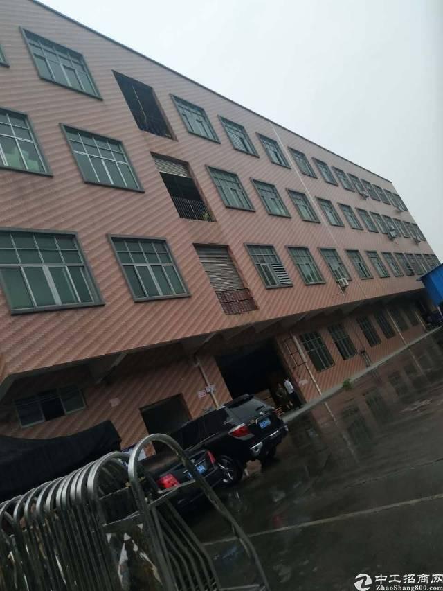 石排镇原房东一楼2000厂房招租。