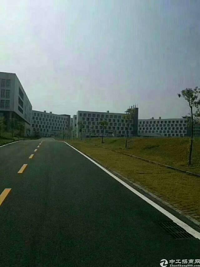 福永高新产业园区45000平方对外出租