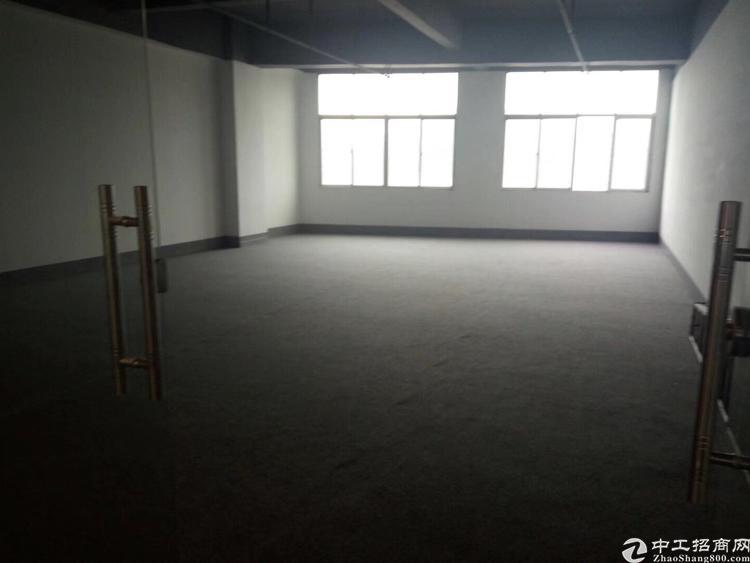 龙华清湖双地铁站间新出楼上1800平带装修可分租