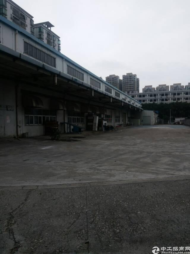 福永新出单一层10米高带红本钢构招租