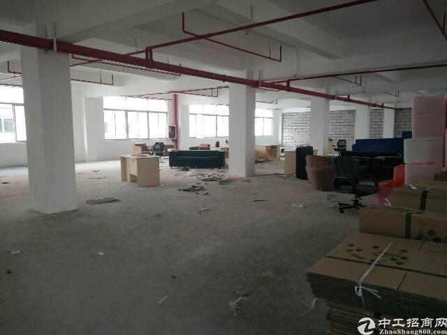 西丽旺塘366大街附近新出1100平精装一楼亿万先生