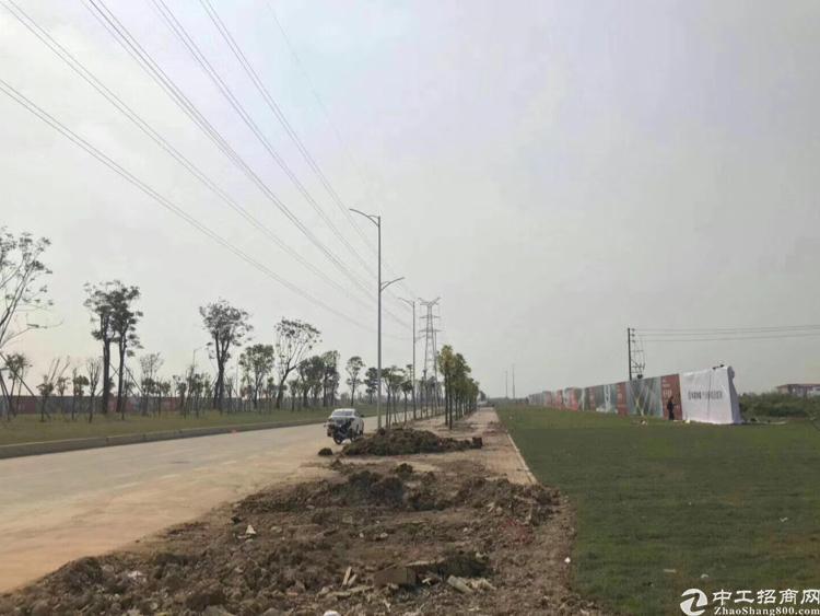 杭州嘉善政府招商引资项目
