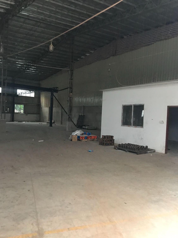 大岭山连马路边新出钢构厂房1200平方出租