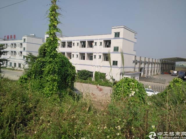 独院单一层6000平米招租