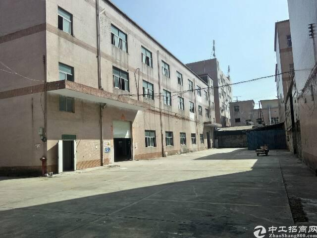 公明镇新出厂房一二楼各2000平方