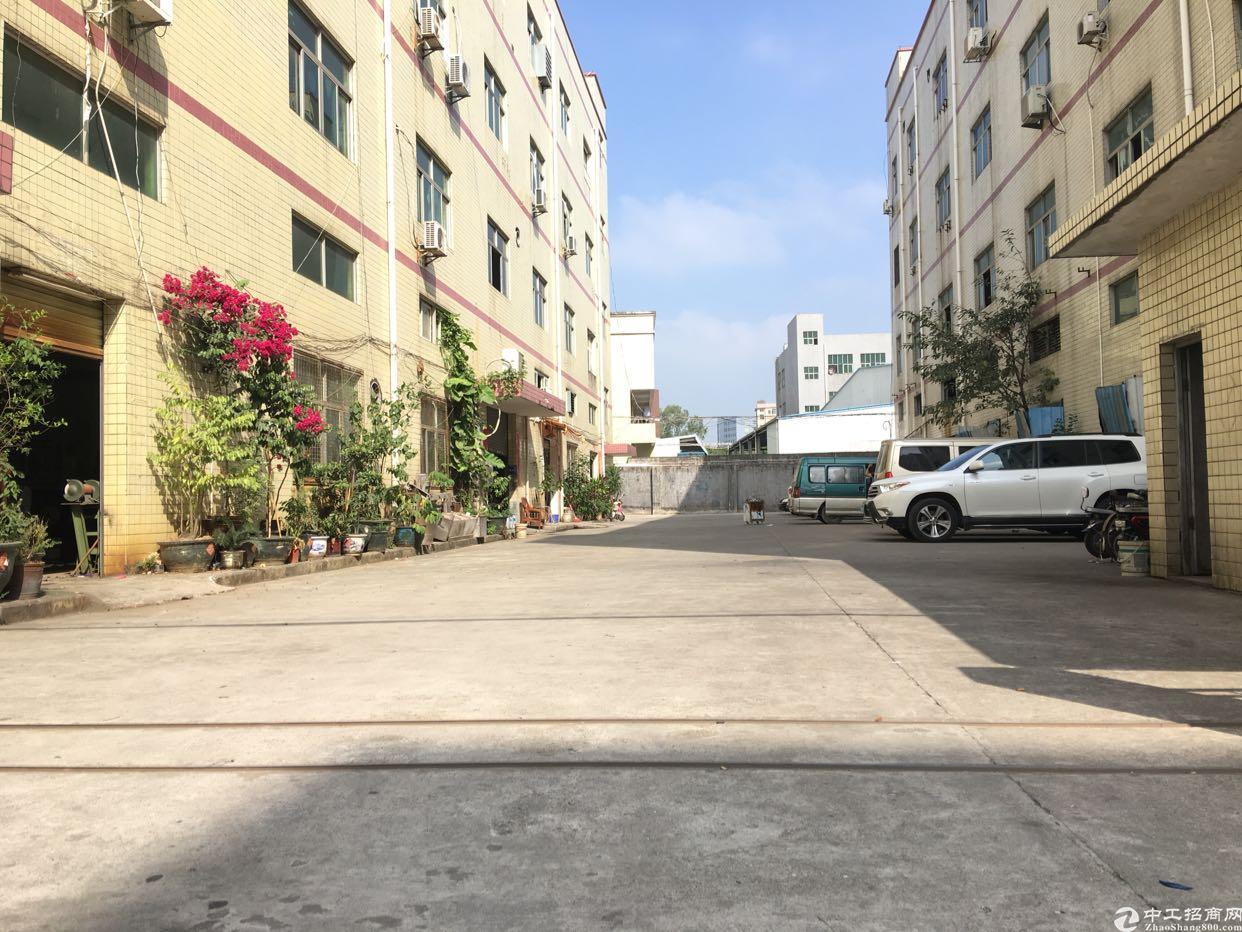 花园式一手房东独门独院厂房1-4层5000平米,独立院子