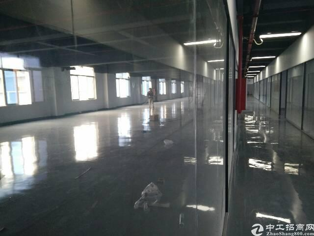 西丽兴东地铁口附近新出2000平大小面积可分租亿万先生