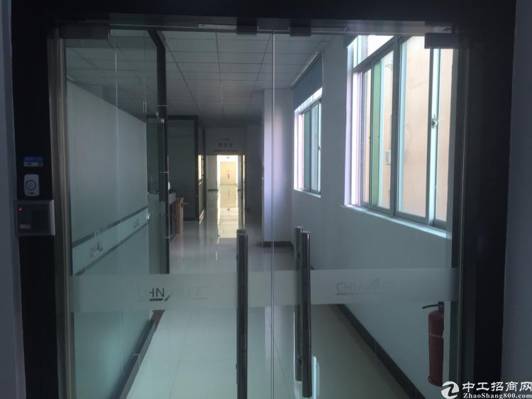 (出租)福永新出楼上700平米,400平米(精装小面积)-图3