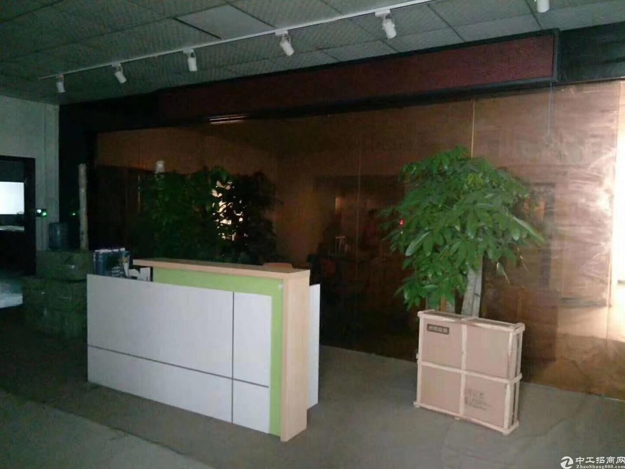 龙华新区1000平厂房出租,精装修无转让费,带消防喷淋