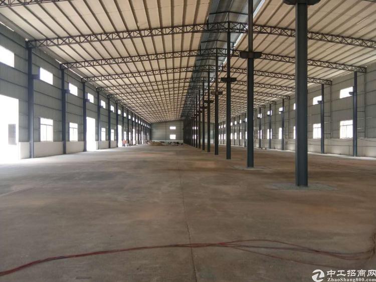 企石镇新出独门独院钢结构厂房高度11米