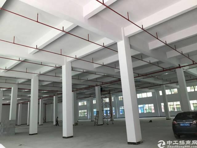 桥头镇原房东独门独院8000平米厂房出租