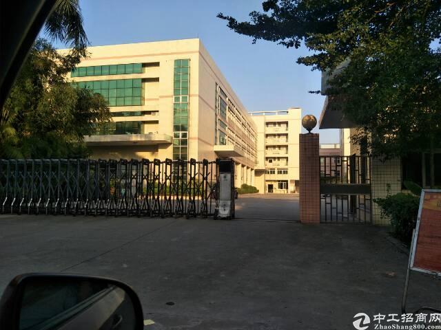 茶山原房东分租花园式一楼1100平方
