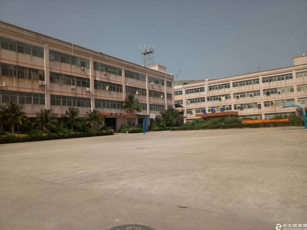 同乐原房东厂房6600平方