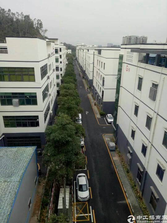 龙华新区科技产业园2楼1500平米亿万先生