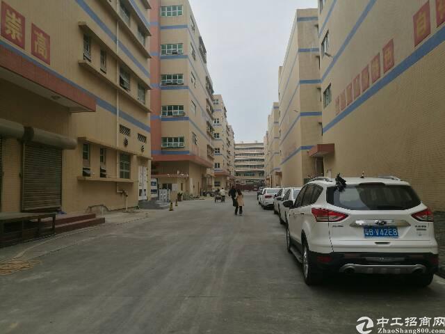 沙井镇地铁口11000平米原房东独院出租-图3