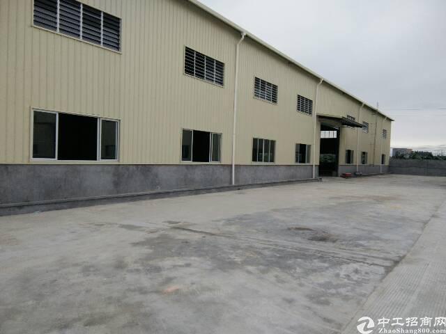 茶山新出全新钢构铁皮房12500平方招租