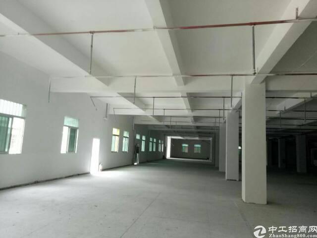 清溪镇原房东独院厂房12000平-图2