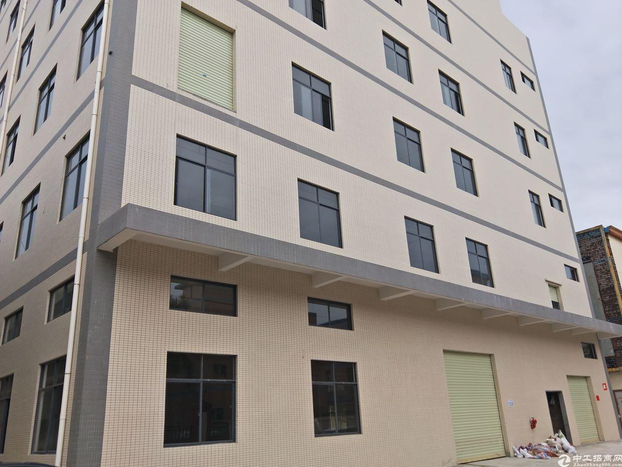 桥头镇新出独栋标准厂房1-5层