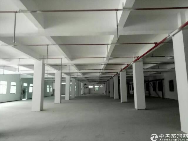 清溪镇原房东独院厂房12000平
