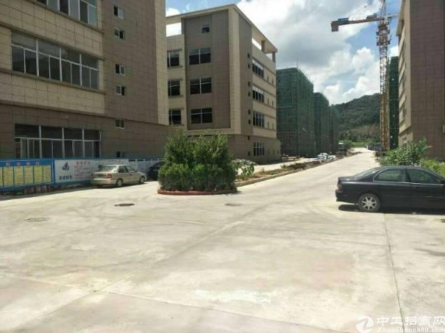 大岭山镇向东村新出标准一楼2000平米出租