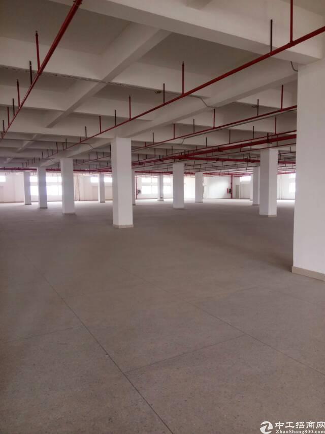 黄江镇新出原房东厂房可整层分租行业不限