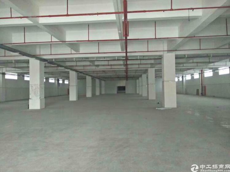 厚街镇高速出口附近新出原房东独门独院厂房5500平方米出租