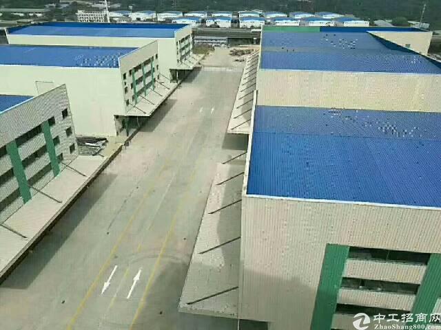 广州黄埔全新高端大气电商物流园5200平方招租-图3